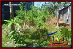 Beautiful LAND IN CANGGU BRAWA BALI FOR SALE TJCG224