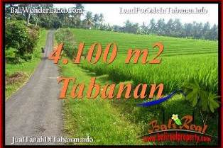 Affordable LAND IN TABANAN FOR SALE TJTB394