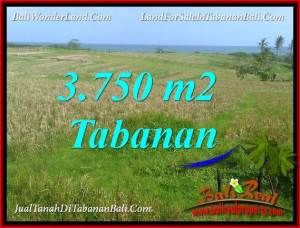 3,750 m2 LAND FOR SALE IN TABANAN SELEMADEG BALI TJTB382