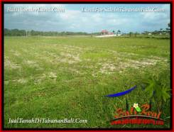 Exotic 3,750 m2 LAND SALE IN TABANAN SELEMADEG BALI TJTB382