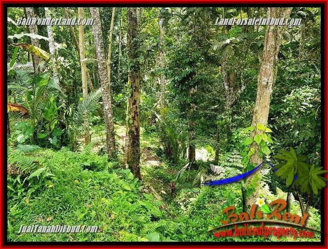 Beautiful Property 860 m2 Land for sale in Ubud Tegalalang Bali TJUB691