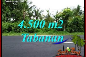 FOR sale Affordable Property Land in Tabanan TJTB395