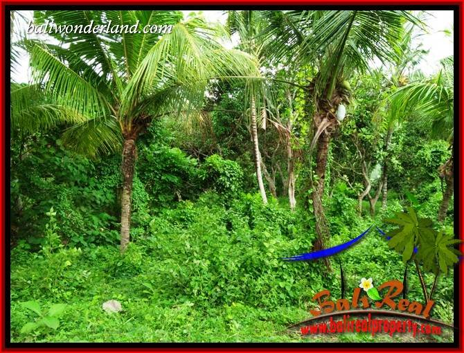 FOR sale Affordable Property Land in Tabanan TJTB395