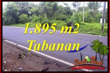 Magnificent Property Tabanan Bali Land for sale TJTB399