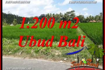 Exotic 1,200 m2 Land in Ubud Tampak Siring for sale TJUB694
