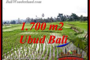1,700 m2 LAND IN UBUD BALI FOR SALE TJUB770
