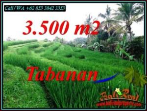 Exotic LAND SALE IN TABANAN BALI TJTB500
