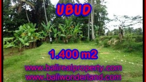 Land for sale in Ubud, Fantastic view in Ubud Tegalalang Bali – TJUB419