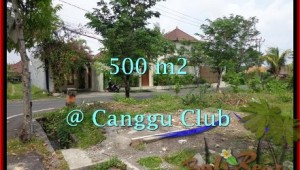 Canggu Brawa BALI 500 m2 LAND FOR SALE TJCG176