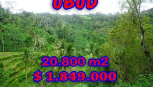 Property in Bali for sale, Spectacular land for sale in Ubud Bali  – 20,800 sqm @ $ 89