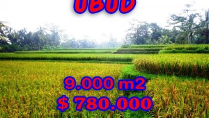 Exceptional Property in Bali, Land in Ubud Bali for sale – TJUB264