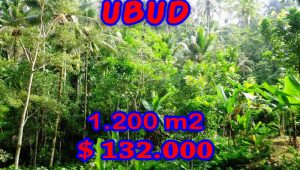 Exceptional Property in Bali, Land in Ubud Bali for sale – TJUB265