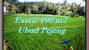 Magnificent PROPERTY 490 m2 LAND FOR SALE IN Ubud Tampak Siring TJUB512