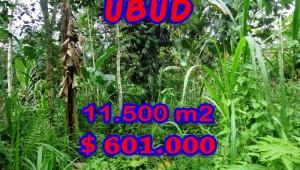 Land for sale in Bali, exotic view in Ubud Payangan Bali – TJUB260