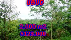 Land in Bali for sale, Spectacular view in Ubud Bali – TJUB248