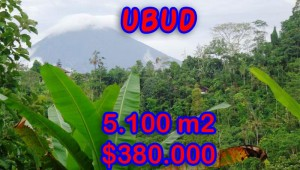 Magnificent Property for sale in Bali, land for sale in Ubud Bali – TJUB249