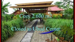 FOR SALE Magnificent PROPERTY 2,600 m2 LAND IN UBUD BALI TJUB491
