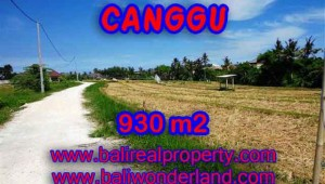 Affordable PROPERTY 930 m2 LAND FOR SALE IN CANGGU TJCG146