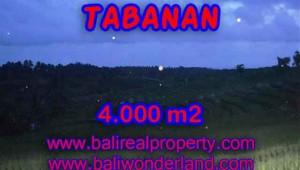 Land in Tabanan Bali for sale, nice view in Tabanan Selemadeg Bali – TJTB096