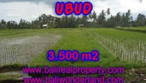 Wonderful Property in Bali for sale, land in Ubud Bali for sale – TJUB395