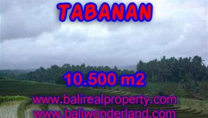 Land for sale in Tabanan, Fantastic view in Tabanan Selemadeg Bali – TJTB095