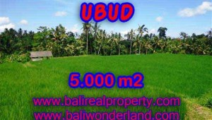 Land for sale in Bali, wonderful view in Ubud Bali – TJUB389