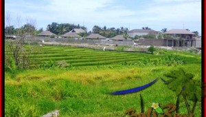 FOR SALE Exotic PROPERTY LAND IN Canggu Cemagi BALI TJCG137