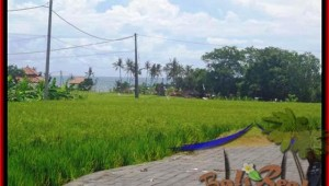 Exotic PROPERTY LAND SALE IN Canggu Cemagi TJCG138