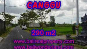 Property in Bali for sale, Astonishing land for sale in Canggu Bali – TJCG141