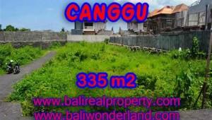 Astounding Property in Bali for sale, Natural garden view land in Canggu Bali – TJCG142