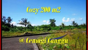 FOR SALE Affordable LAND IN CANGGU BALI TJCG171