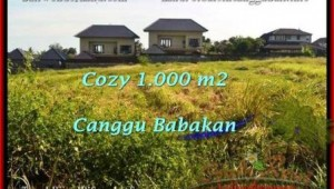 Exotic PROPERTY CANGGU 1,000 m2 LAND FOR SALE TJCG178