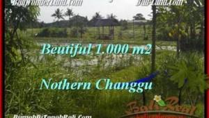 Magnificent PROPERTY Canggu Batu Bolong  BALI LAND FOR SALE TJCG180