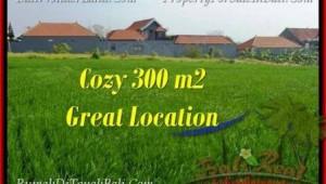 Exotic PROPERTY LAND FOR SALE IN Canggu Brawa BALI TJCG186