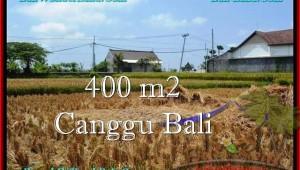 Beautiful PROPERTY Canggu Pererenan BALI LAND FOR SALE TJCG188
