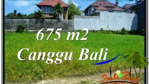 Beautiful LAND IN Canggu Brawa BALI FOR SALE TJCG200