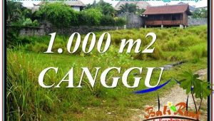 FOR SALE Magnificent PROPERTY 1,000 m2 LAND IN CANGGU TJCG214
