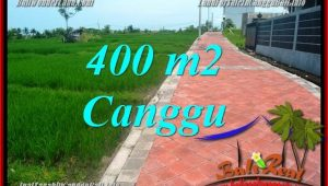 Magnificent LAND SALE IN Canggu Pererenan TJCG219