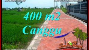 Magnificent LAND SALE IN Canggu Pererenan TJCG219