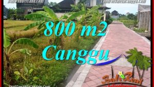 Affordable PROPERTY LAND FOR SALE IN Canggu Brawa BALI TJCG221