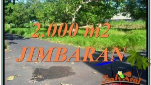 Magnificent 2,000 m2 LAND SALE IN Jimbaran Uluwatu  TJJI114