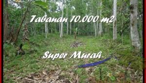 FOR SALE LAND IN Tabanan Penebel TJTB177