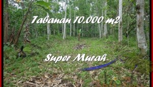 FOR SALE LAND IN Tabanan Penebel TJTB177