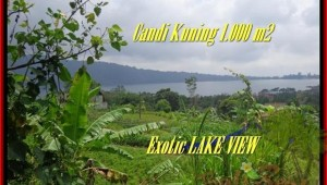Magnificent PROPERTY 1.000 m2 LAND SALE IN TABANAN BALI TJTB179