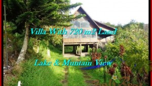 Affordable LAND IN Tabanan Bedugul BALI FOR SALE TJTB190