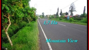 Affordable LAND IN Tabanan Bedugul BALI FOR SALE TJTB191