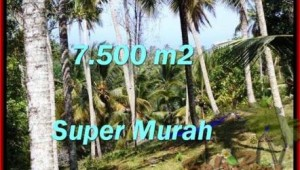 LAND FOR SALE IN Tabanan Selemadeg BALI TJTB207