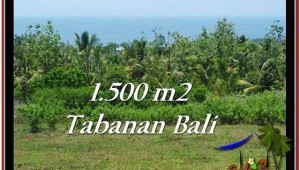 Exotic PROPERTY LAND IN TABANAN FOR SALE TJTB234