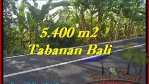 Exotic 5,400 m2 LAND FOR SALE IN TABANAN BALI TJTB241