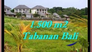 Affordable PROPERTY LAND FOR SALE IN TABANAN TJTB252